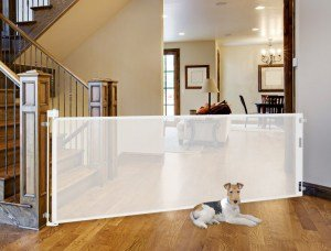 Best Retractable Dog Gates